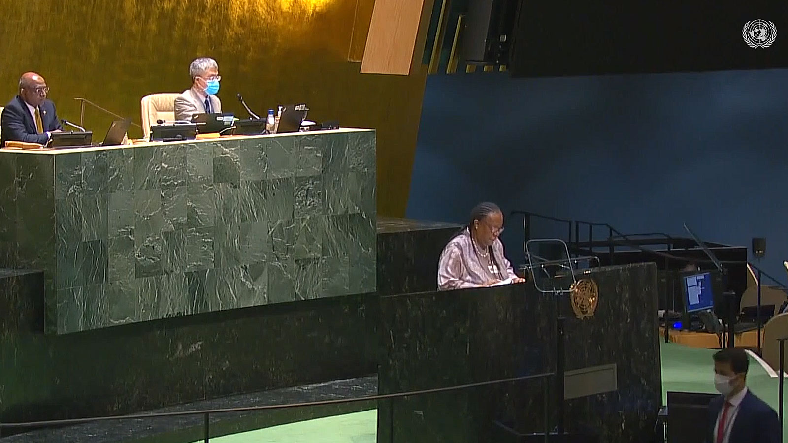UN General Assembly: Reparations, racial justice and equality for people of African descent